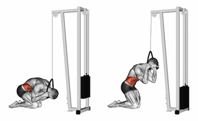 Kneeling Cable Crunch