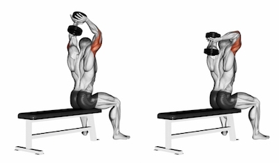 Two Arm Overhead Seated Triceps Extensions