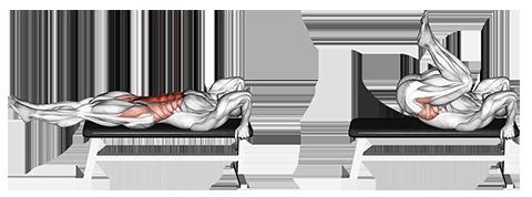 Lying Flat Bench Knee Raises