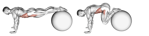 Stability Ball Pull Ins