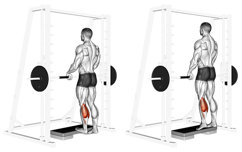 Hanging Grip Smith Machine Standing Calf Raises