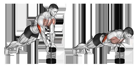 Exercise Database (Chest26) - Close Grip Dumbbell Push Ups — Jase ...