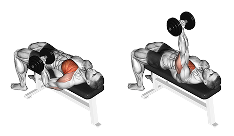 One Arm Flat Dumbbell Chest Press