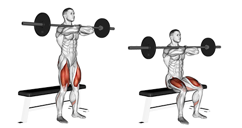 Barbell Bench Front Squats