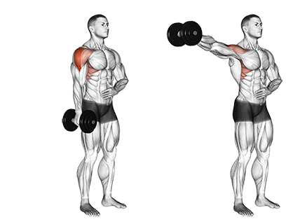 One Arm Standing Dumbbell Lateral Raises