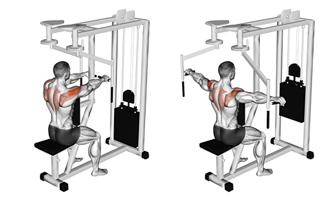 Seated Reverse Fly - Horizontal Handles