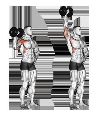 Standing One-Arm Dumbbell Shoulder Press
