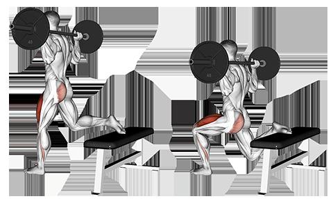 Single Leg Barbell Split Squat