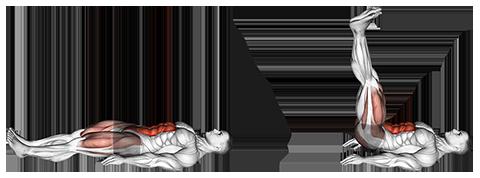 Exercise Database (Abs33) - Lying Leg Raise — Jase Stuart - The ...