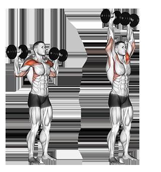 Standing Dumbbell Shoulder Press
