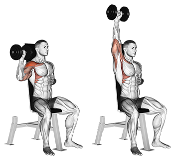 Seated One-Arm Dumbbell Shoulder Press