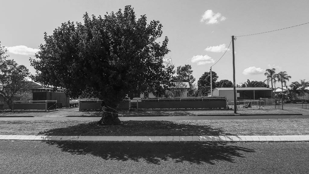 20150911_Clermont_State_School_Camera_C_0010.jpg