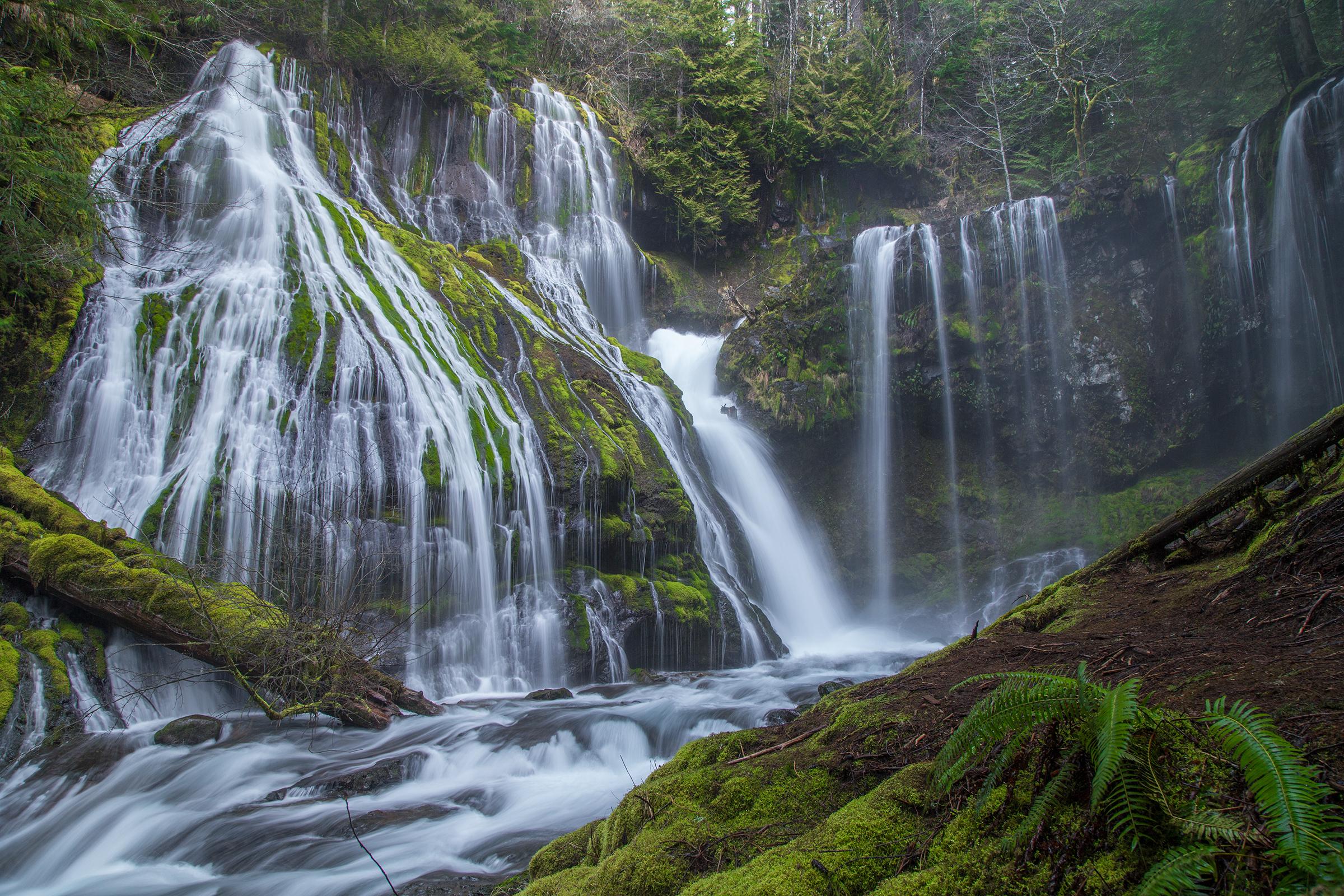 Panther Creek Falls 2 Web.jpg