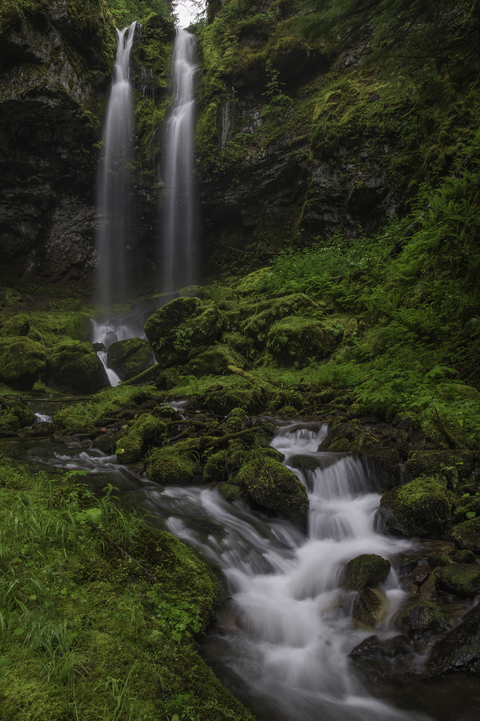 Covell Creek Falls Web.jpg