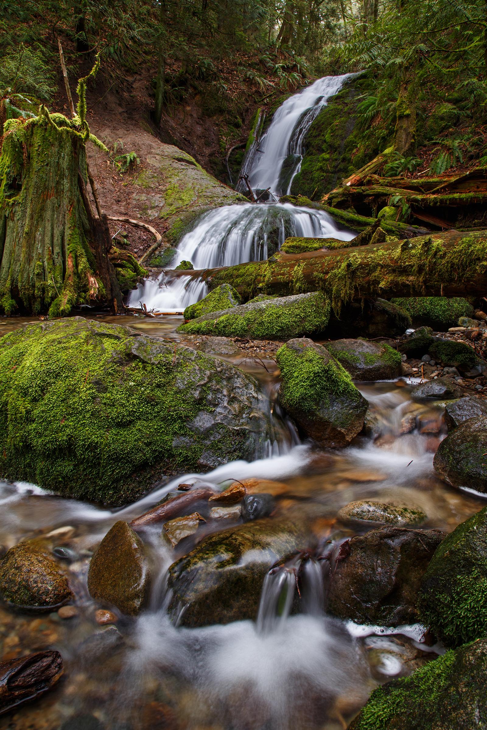 Coal Creek Falls web.jpg