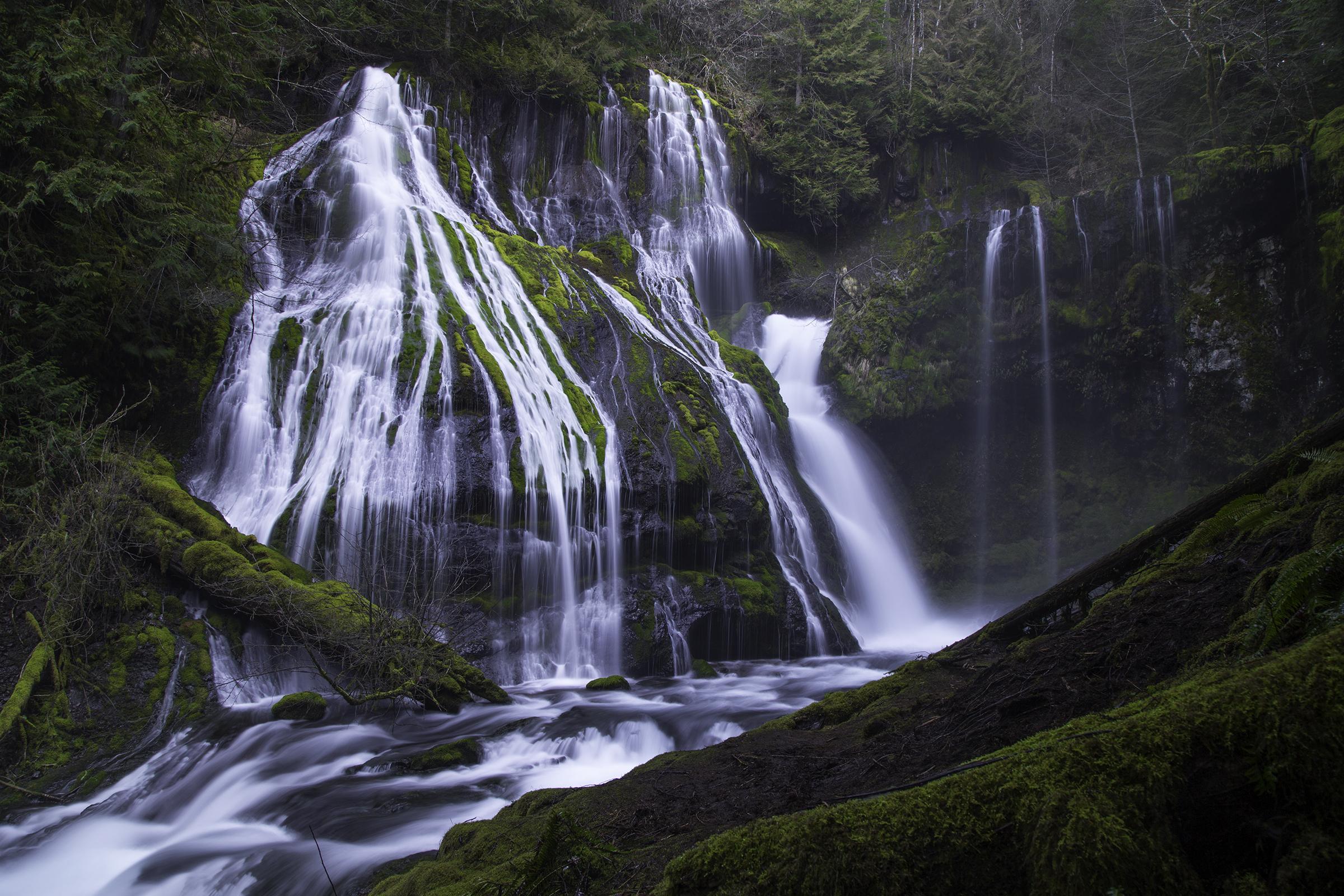 Panther Creek Falls 3 Web.jpg