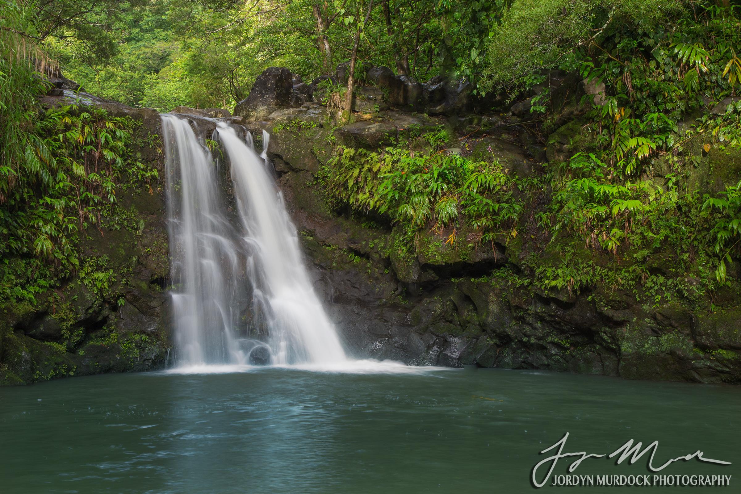Waikamoi Falls Web WM.jpg