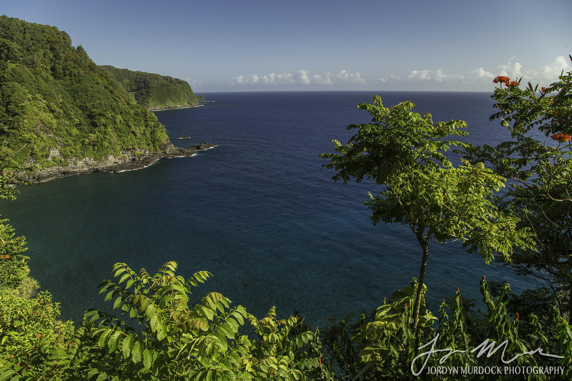 Maui Coast 2 Web WM.jpg