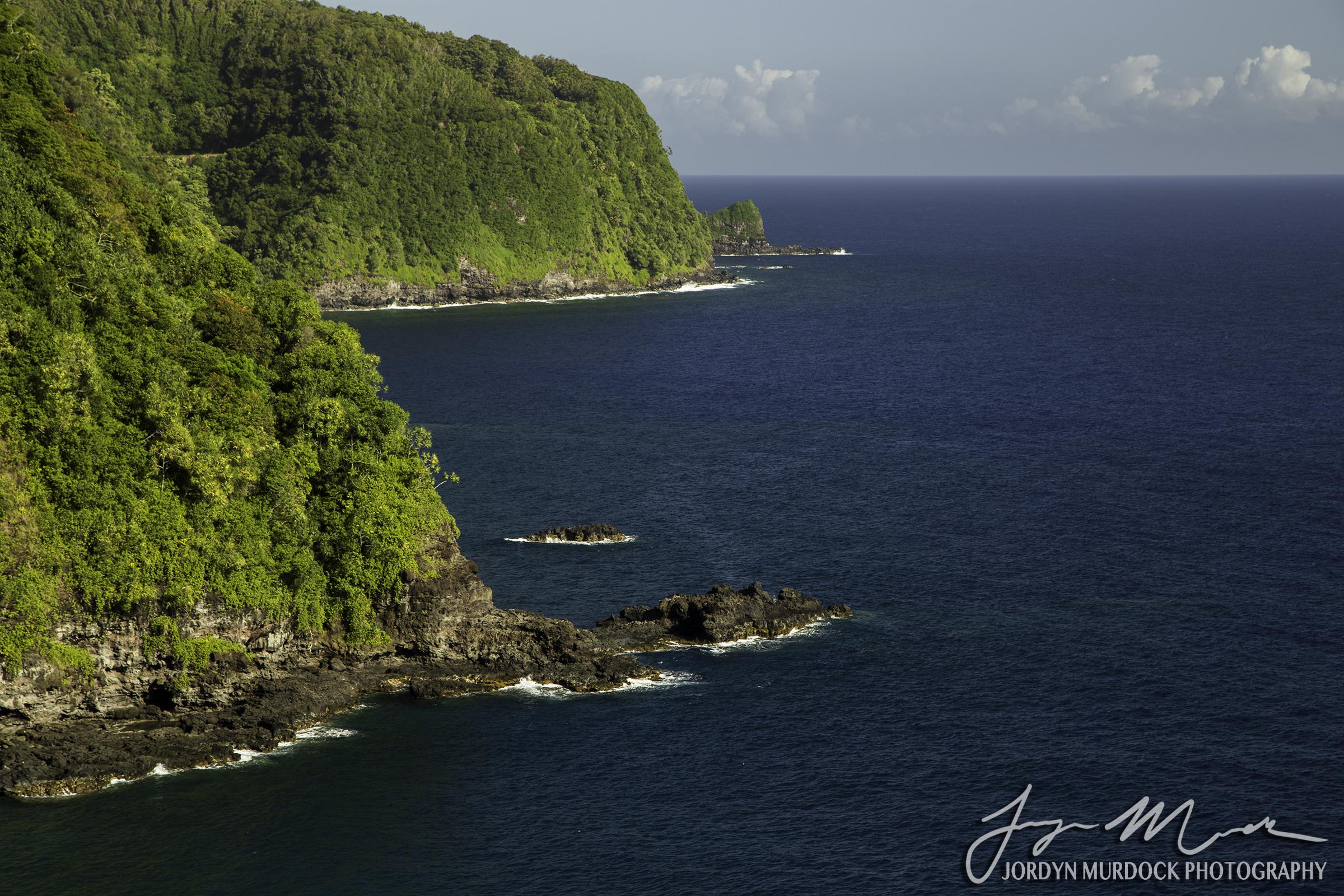 Maui Coast Web WM.jpg