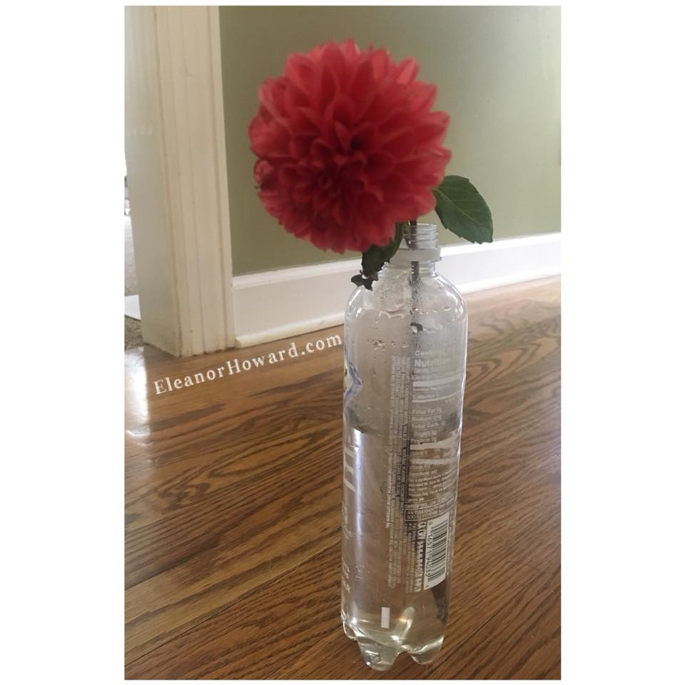 Sparkling Ice and Flower.jpg