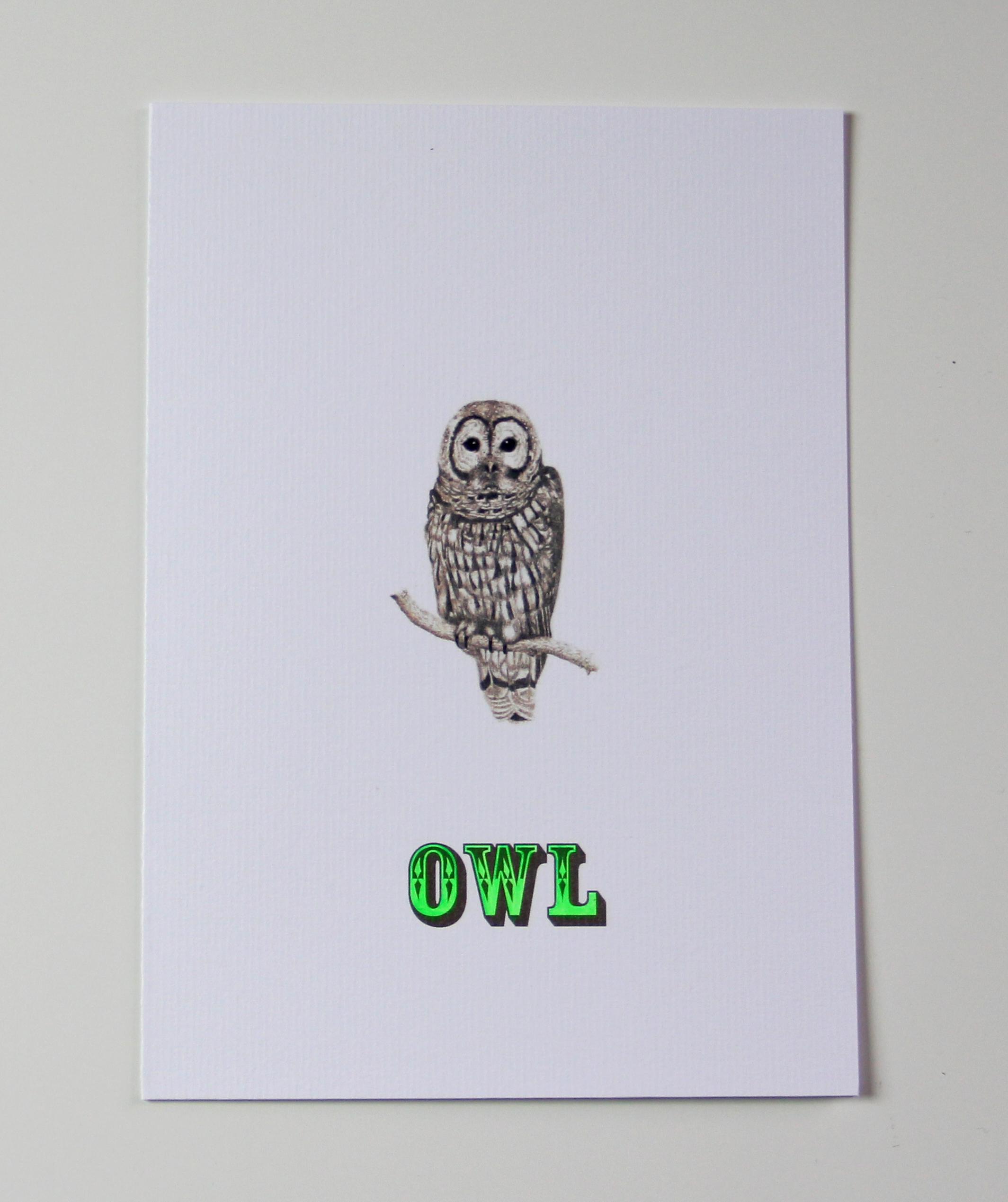 SHOP OWL G-I-D CARD.jpg