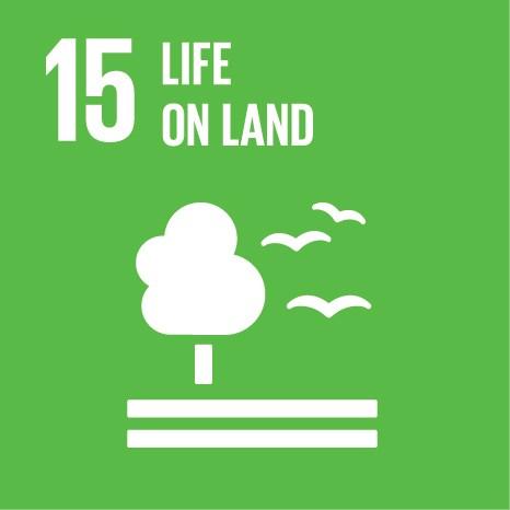 SDG 15 Life on Land.jpg