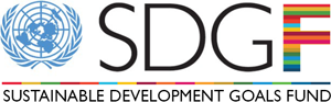 The Sustainable Development Goals Fund - Program created to support sustainable development activities.