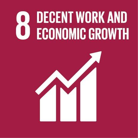 08 Decent Work and Economic Growth.jpg