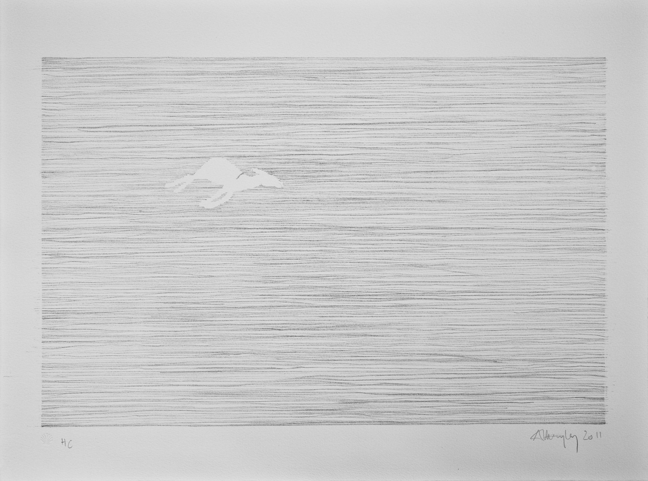 Lithograph, edition of 10  2011,58x43cm