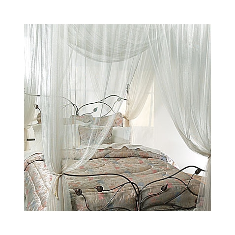This picture is old school,but I want you to see the canopy I am talking about from Bed, Bath, and Beyond.