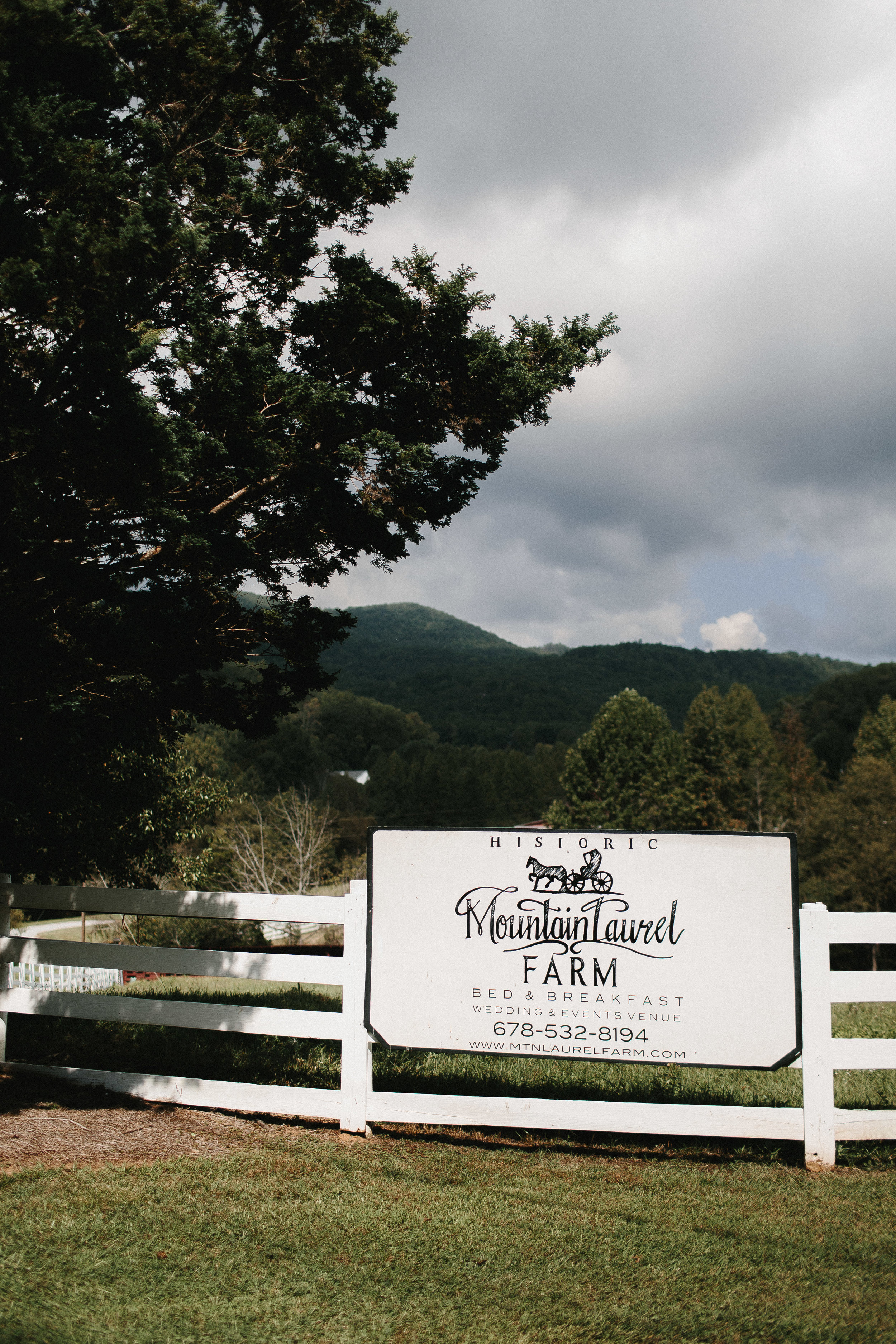 cleveland_georgia_mountain_laurel_farm_natural_classic_timeless_documentary_candid_wedding_emotional_photojournalism_river_west_1001.jpg