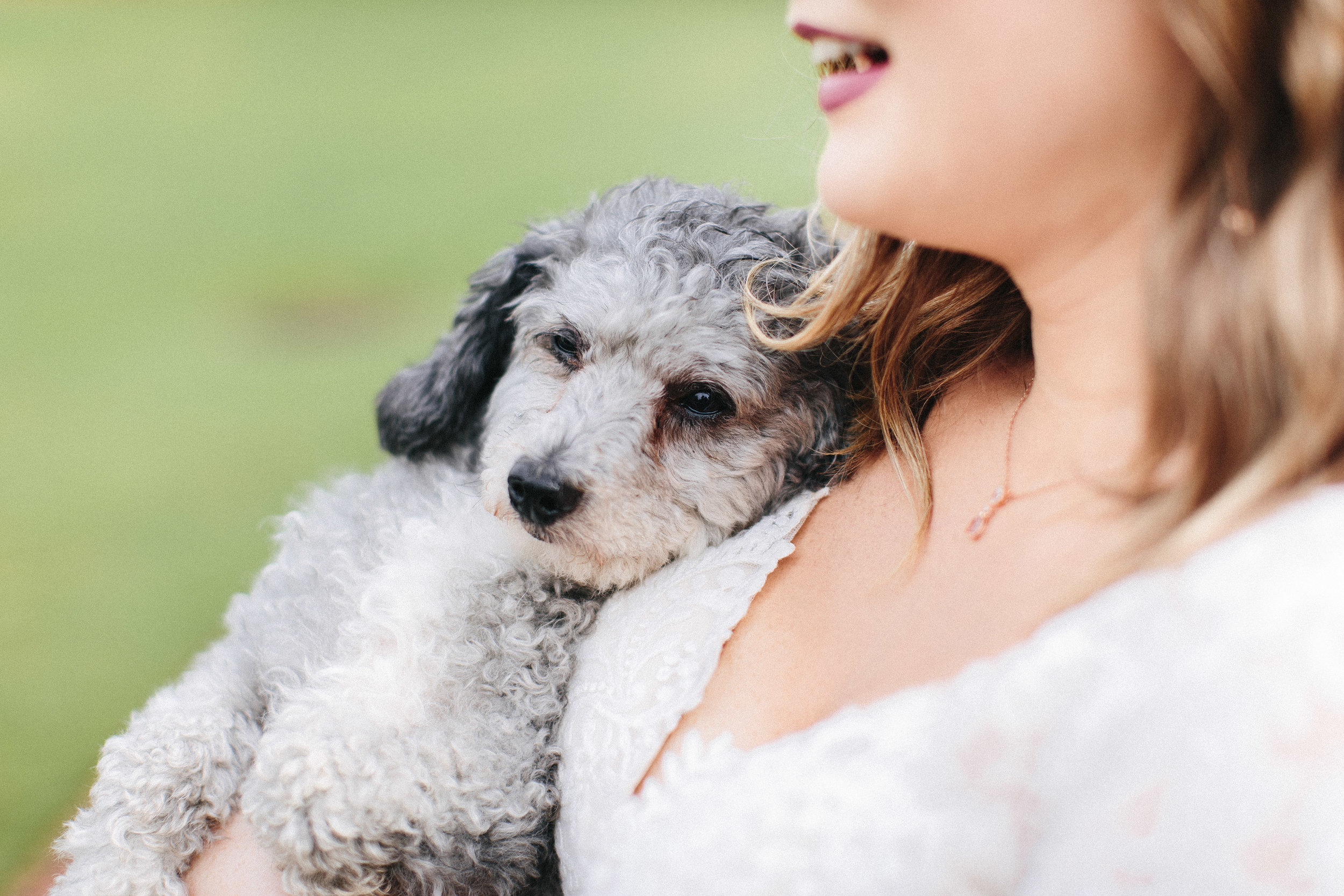 newnan_georgia_elegant_rainy_park_elopement_dogs_pups_tiny_wedding_backless_dress_blue_suit_georgia_atlanta_photographer_1295.jpg