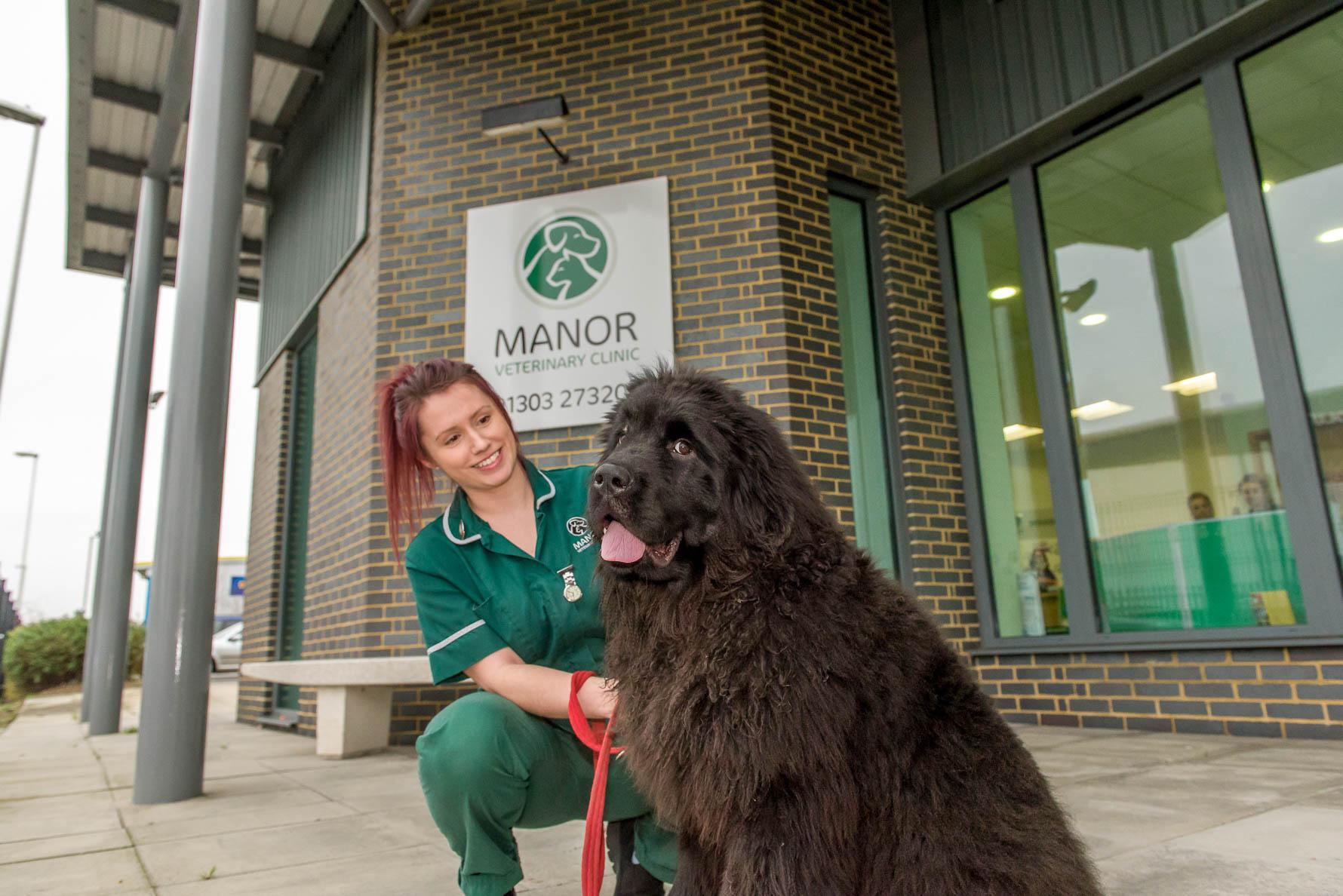 Manor vets Folkestone-8.jpg