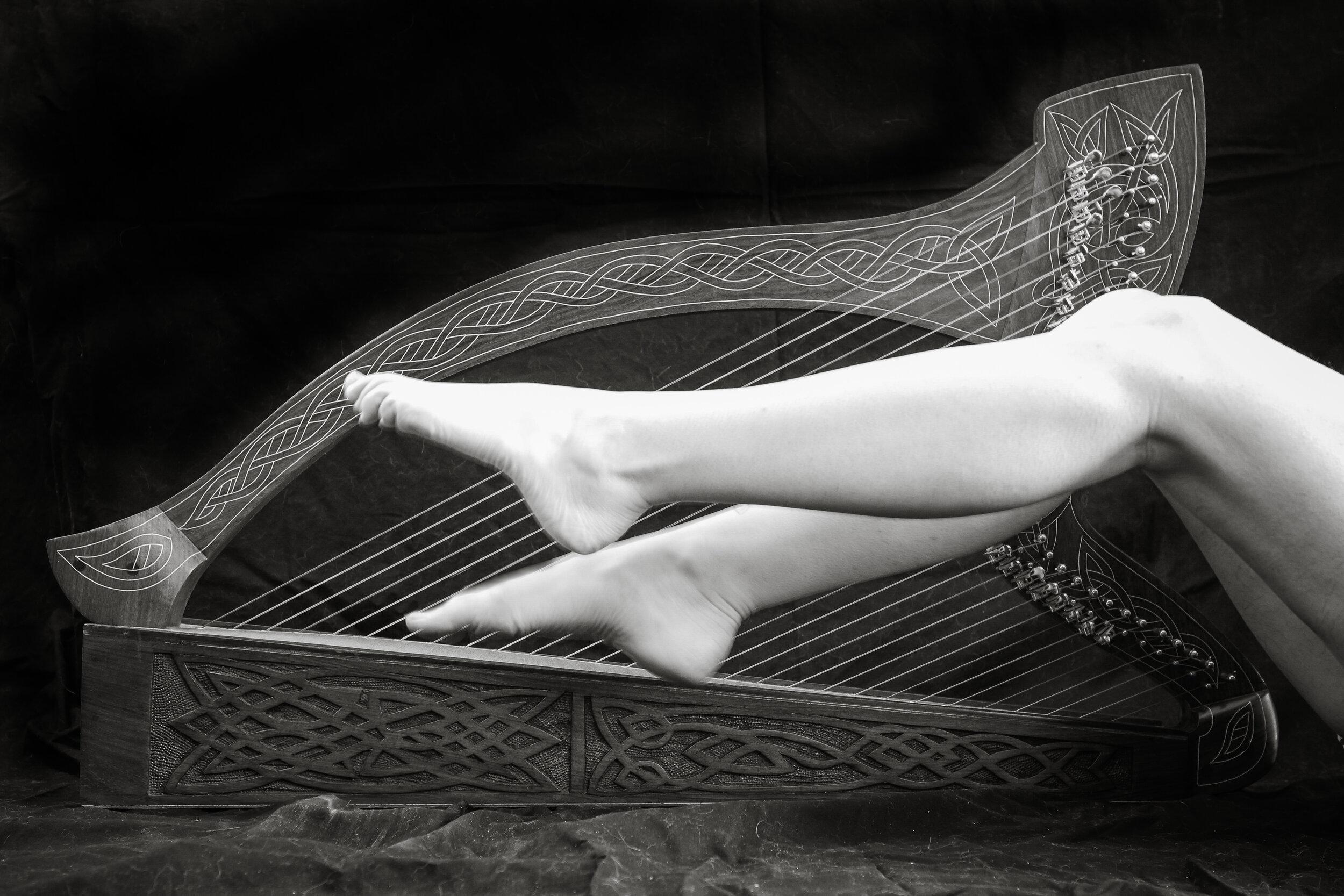 Harpists legs-8197.jpg