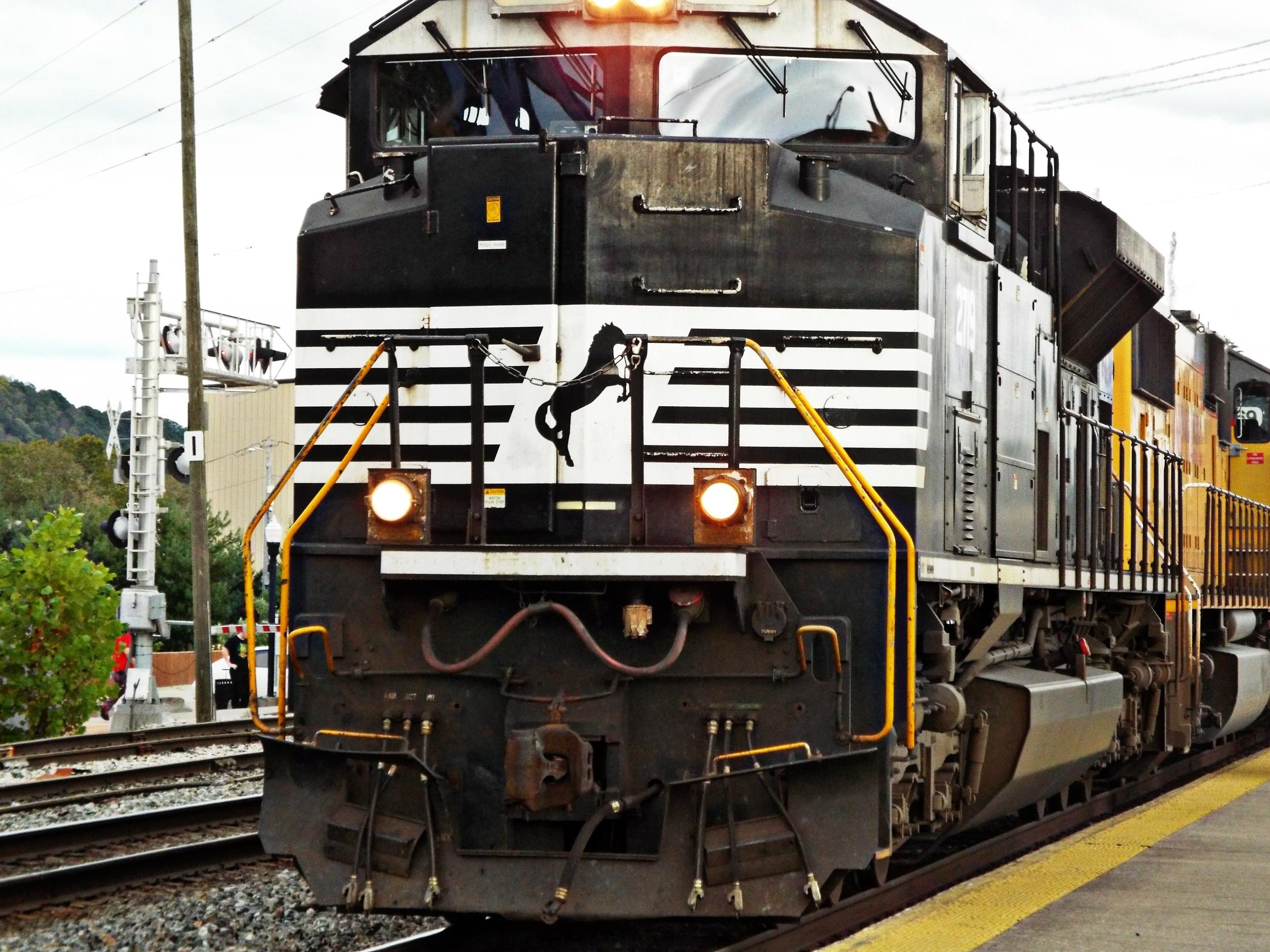 DSCF6595.jpg