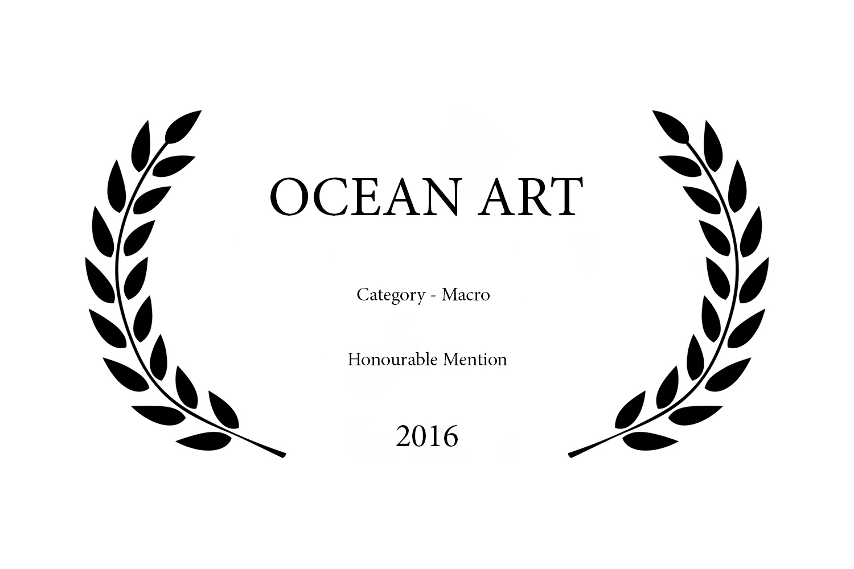 OCEAN ART 2016.jpg