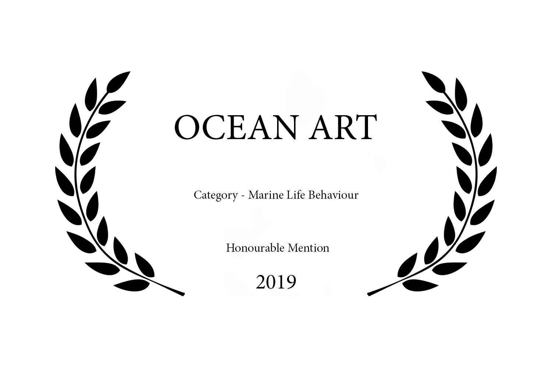 OCEAN ART 2019.jpg