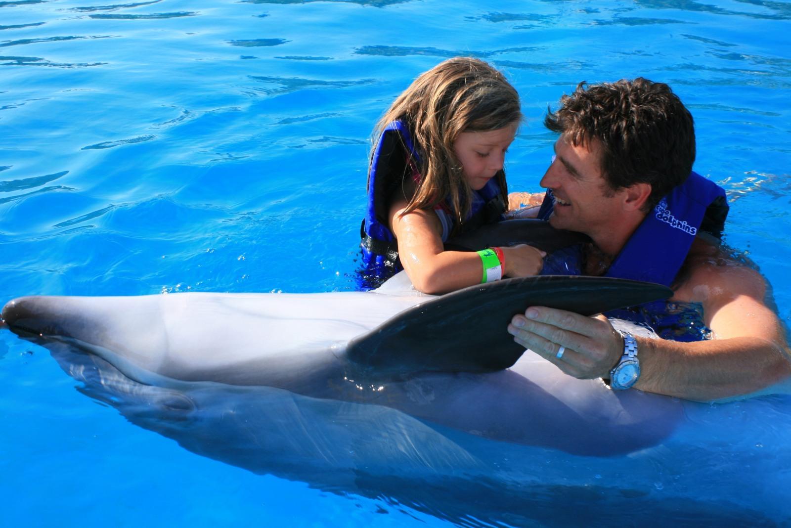 Dolphin_13.JPG