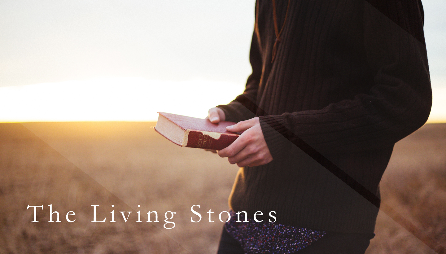 The Living Stones Mens Group.jpg