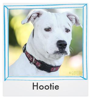hootie thumb.jpg