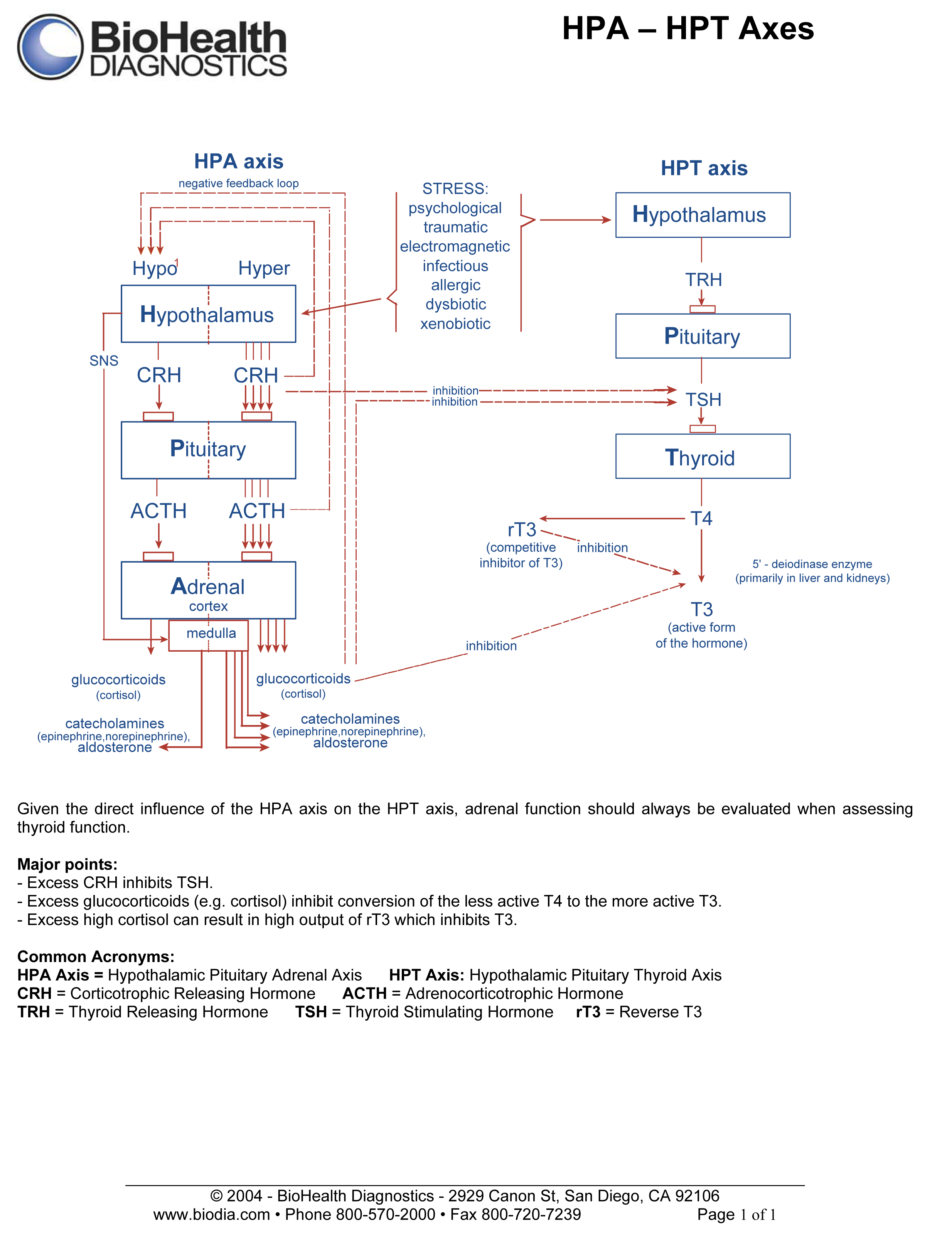 http://www.advancedhealing.com/wp-content/uploads/2012/07/hpa_hpt_axis_chart.pdf