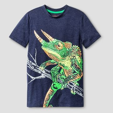 1fcd7b33414d5a0eed9c11c1cea8c41f--lizards-reptiles.jpg