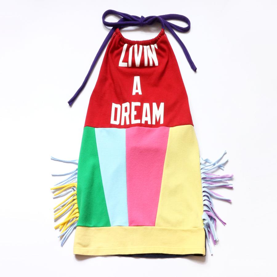 6:7 livin:a:dream:fringe:rainbow:halter.jpg