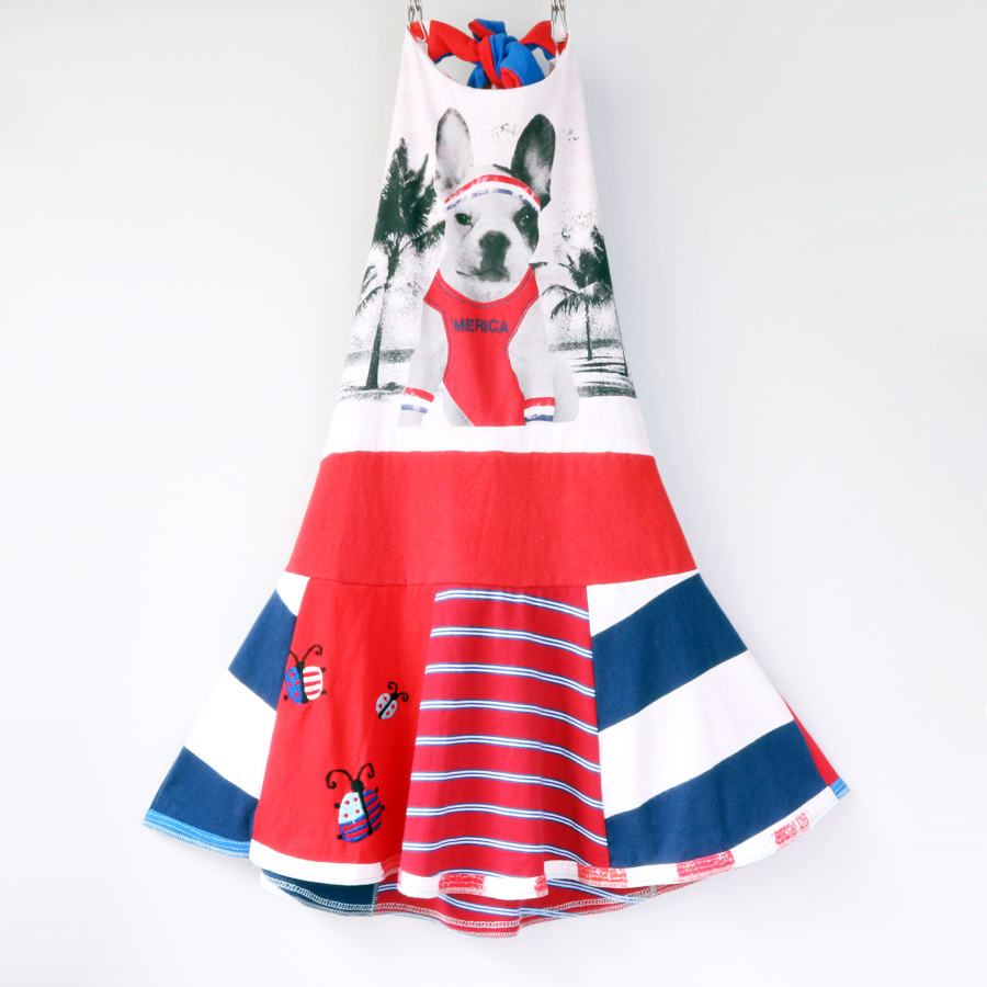 ⅞ merica:boston:terrier:twirl:halter.jpg