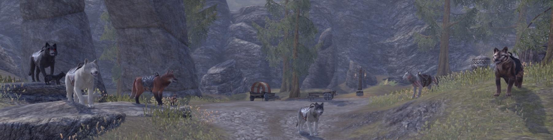 clan wolf 4.jpg