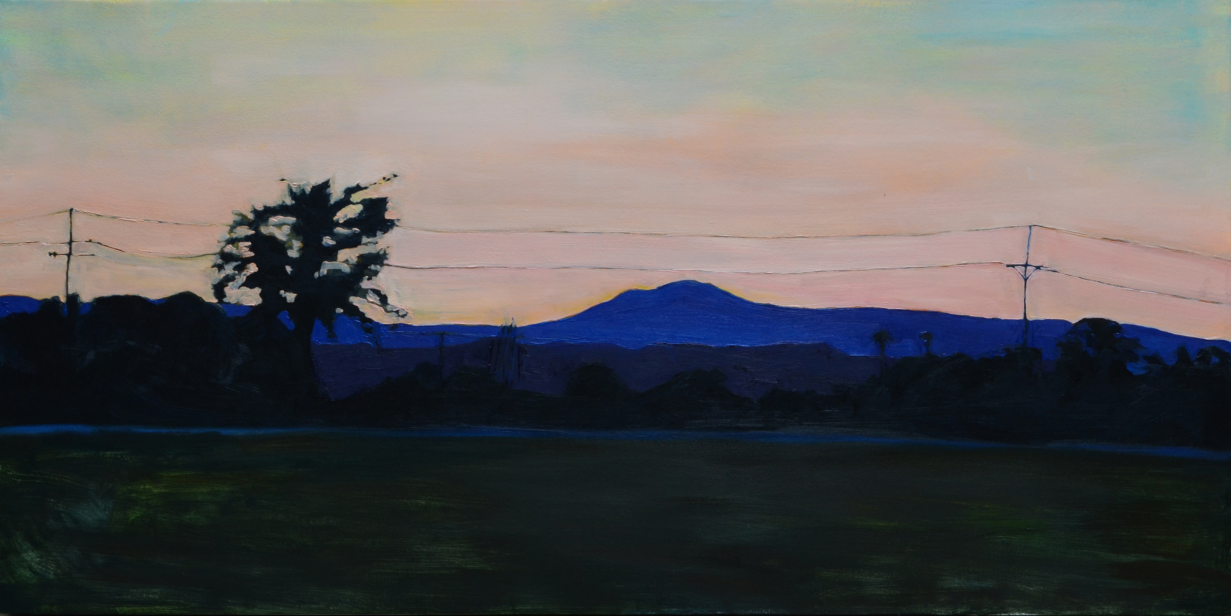 Blue Ridge Mountains . 2014. Oil on panel. 24 x 48 inches. sold.