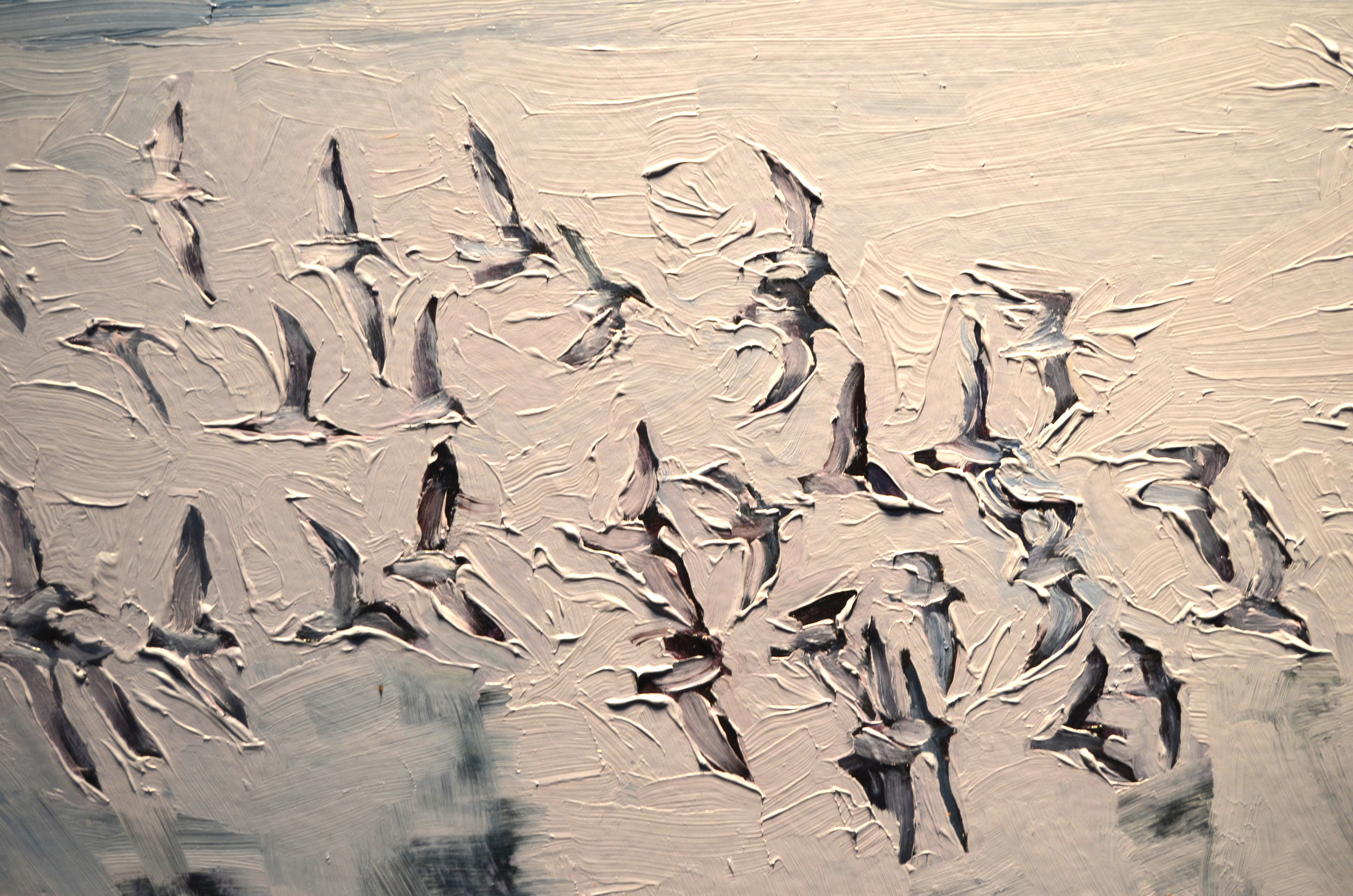"""detail from """"Birds, Shore From Here"""""""