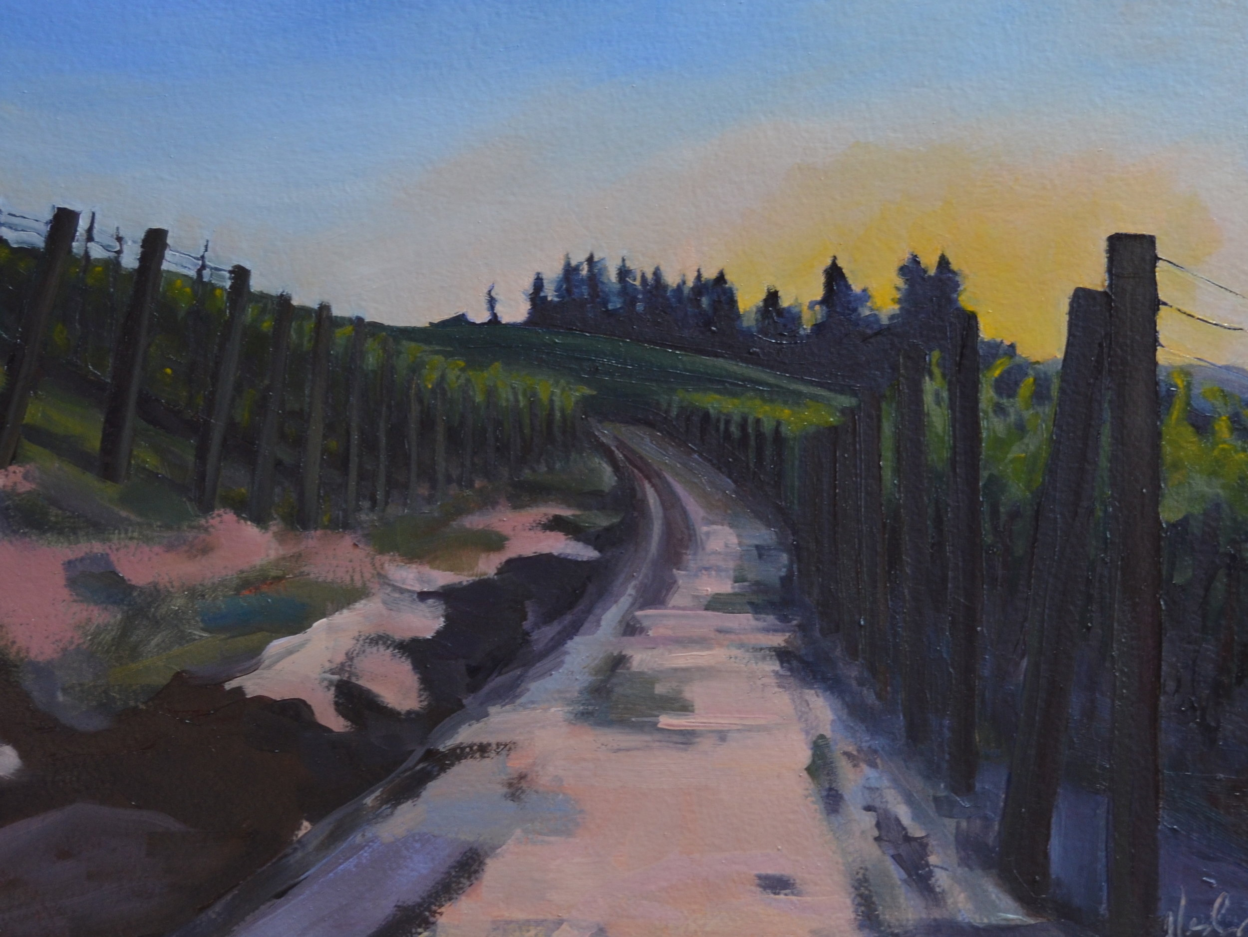 Vineyard, Road