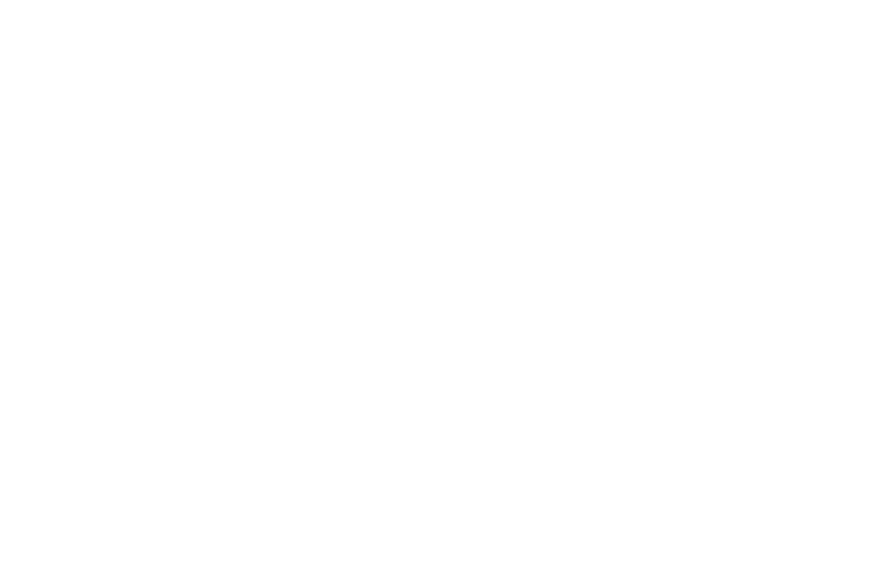 Semi-Finalist - Boston International Film Festival - Screenplay - 2017(1).png