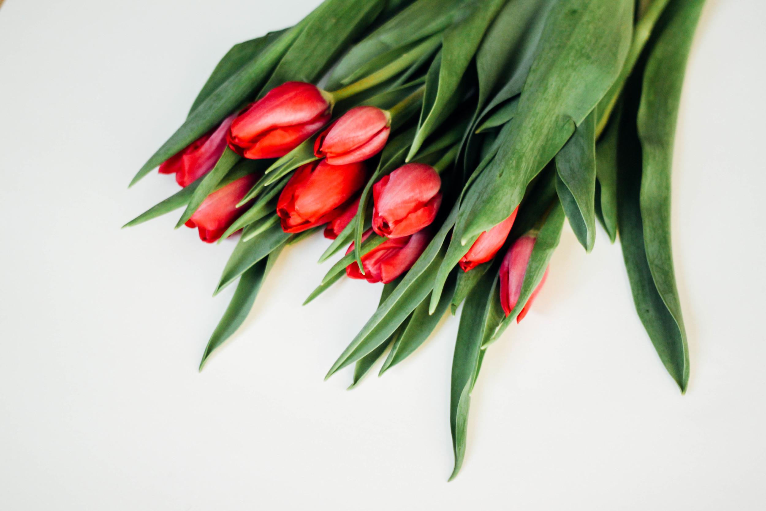 Brielle Rouge Valentines Flowers